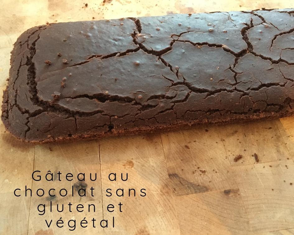 Recette végétalienne et sans gluten du gâteau au chocolat