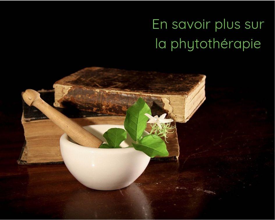 La phytothérapie, notions de base