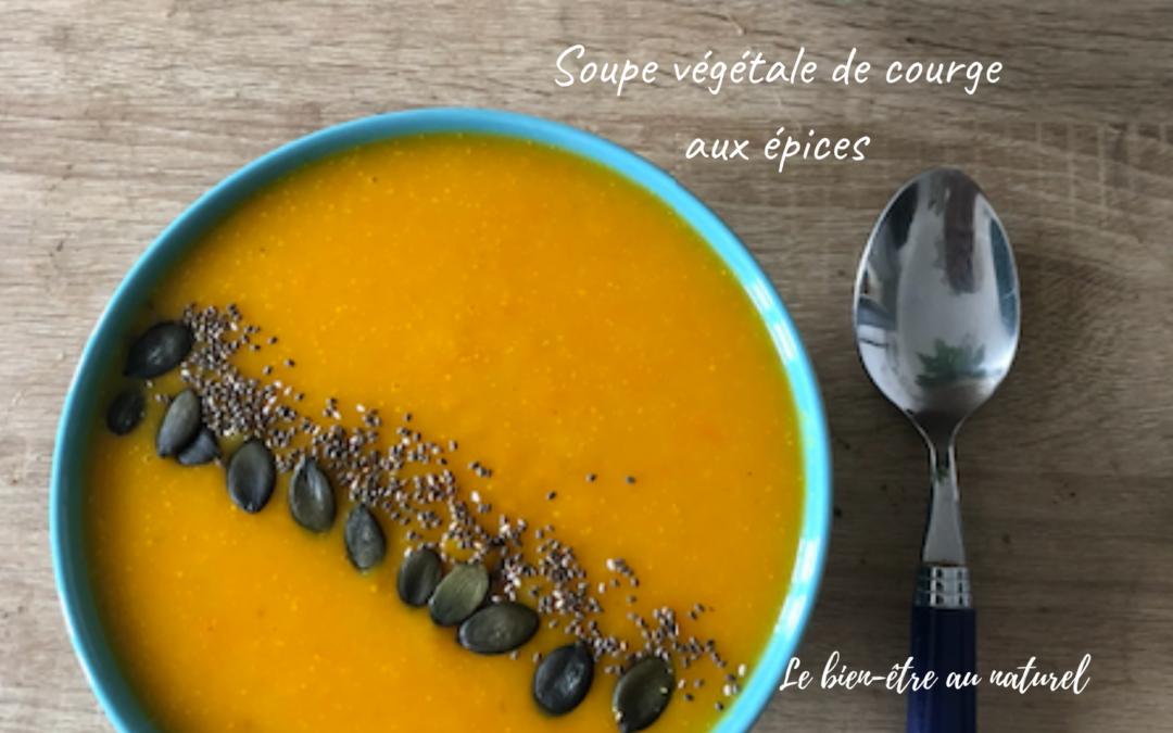 Soupe végétale de courge aux épices
